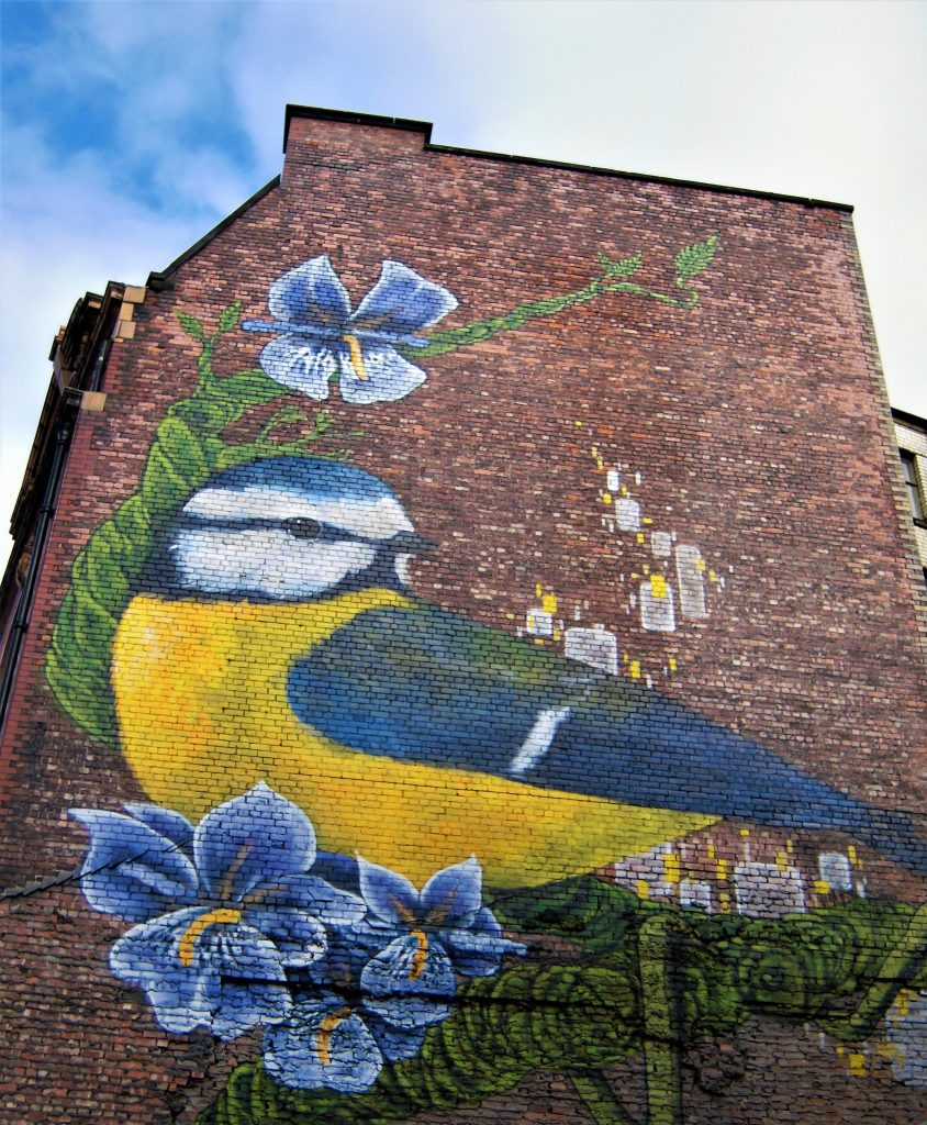 Fountain of Travel A Manchester Weekend Break Northern Quarter Blue Tit Street Art